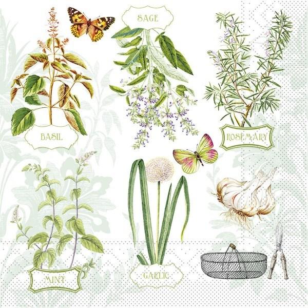 Serviette Fresh Herbs aus Tissue 33 x 33 cm, 100 Stück